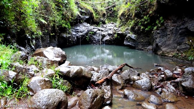 Waimano Falls Manana Trail - Activities On Oahu Pearl City