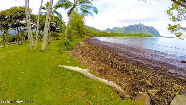 Waiahole Beach Park Beaches On Oahu Kaneohe Hawaii