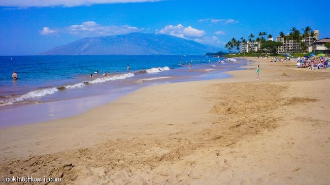 Ole Beach Park Iii The Best Beaches In World