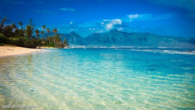 Best Beaches In Paia