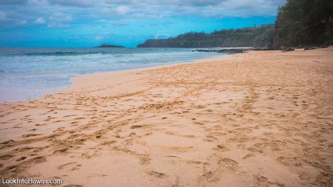 Secret Beach Kauapea Beach Secrets - Beaches On Kauai