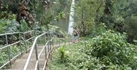 Akaka Falls State Park - Image Uploaded By rachel m