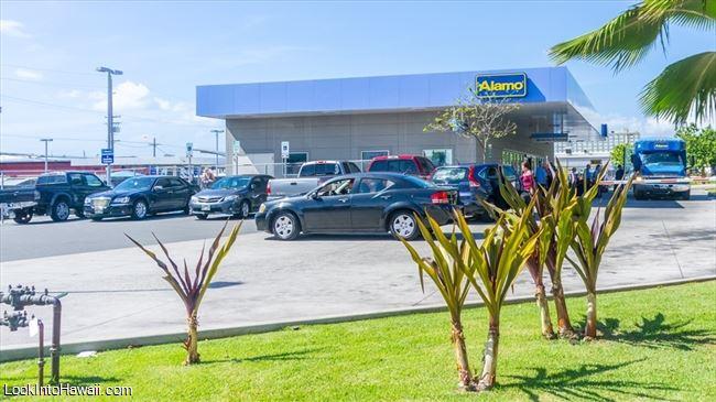 Alamo Rent A Car Shops Services On Oahu Honolulu Hawaii