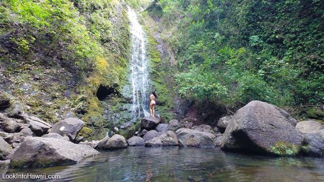 free things to do on oahu information on oahu hawaii