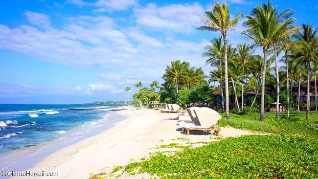 Best honeymoon resorts on big island hawaii information for Best hawaii island for honeymoon