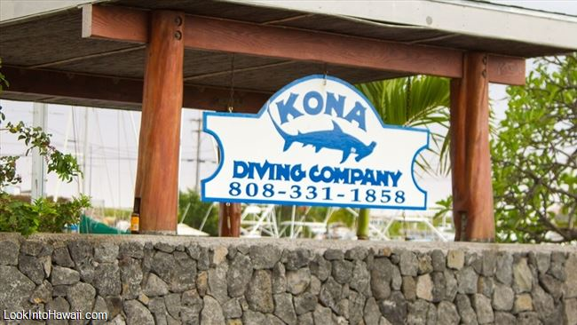 Kona Diving Company >> Kona Diving Company Activities On Big Island Kailua Kona Hawaii