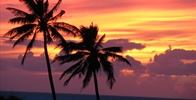 Owner Supplied Image Of Hale Kamaluhia - Beautiful sunsets almost every night. - Image Uploaded By Mike C