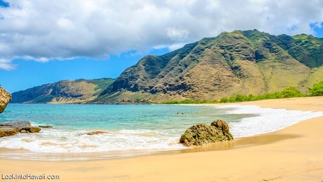 Pray For Beach Makua