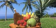 Owner Supplied Image Of Kona Bayview Inn - Fresh fruit from local farms. - Image Uploaded By Sharon C