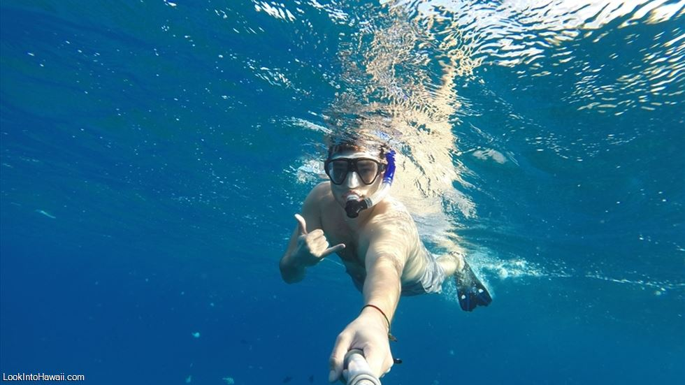 Best Snorkeling Beaches on Oahu