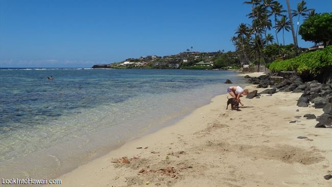 Also Don T Confuse Kahala Beach With Wai Alae Park Which Is The Located Behind Hotel Resort