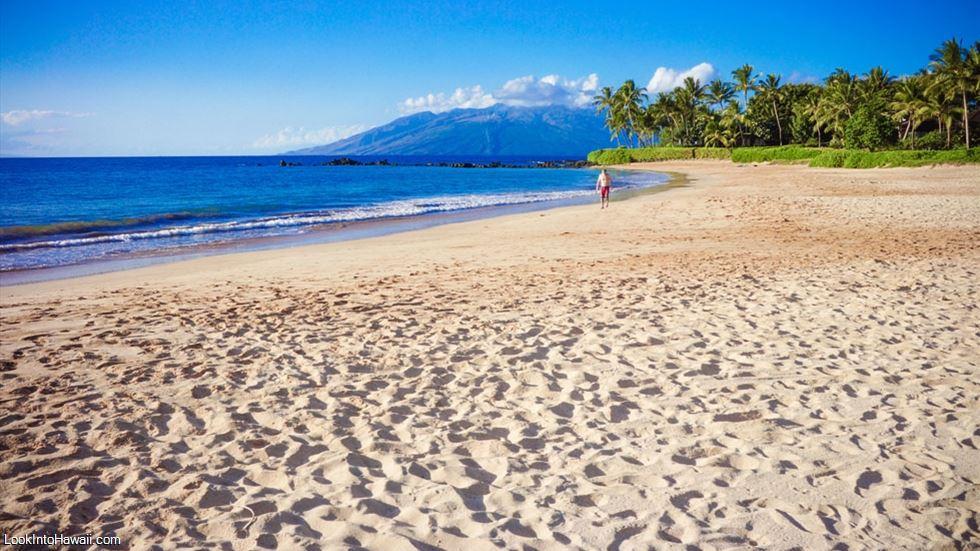 Palauea Beach White Rock 10944