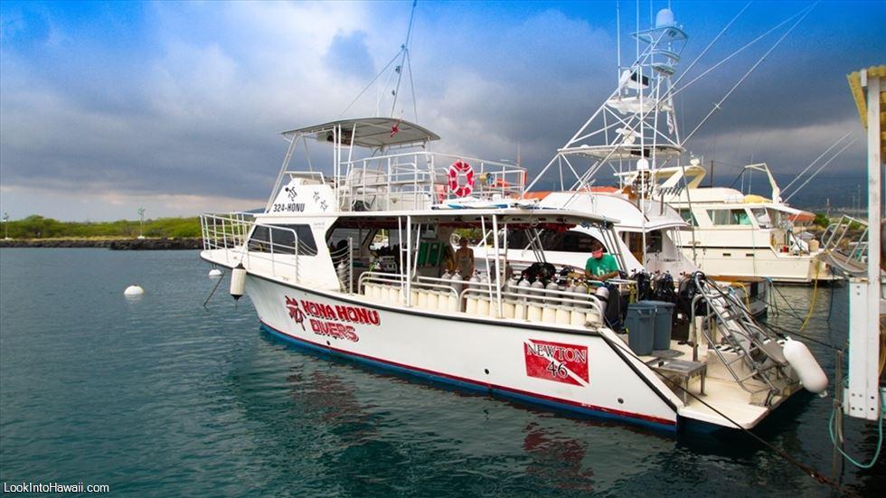 Kona Honu Divers - Activities On Big Island Kailua-Kona ...